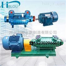 利欧锅炉给水多级泵1.5GC-5*7热水流程泵化工循环泵