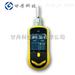 GD13-CO-一氧化碳气体检测仪