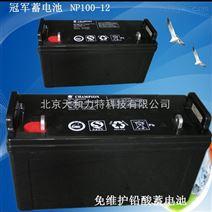 *蓄电池NP100-12 免维护铅酸蓄电池12V100AH