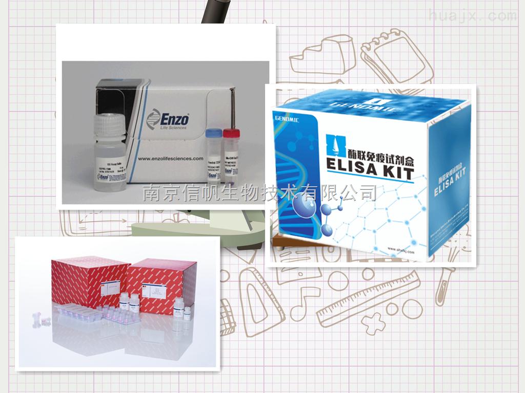 小鼠内皮型一氧化氮合成酶(NOS3/eNOS)elisa试剂盒高灵敏检测