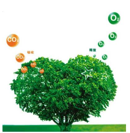 德科学家借助人工光合作用高效固碳